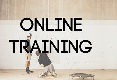 O-Training